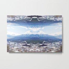 Fugi & Symmetry Metal Print
