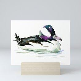 Bufflehead Duck Mini Art Print
