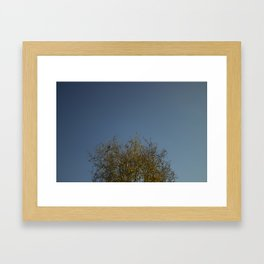 Fall in the Suburbs Framed Art Print