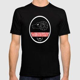 Gleann Abhann T-shirt