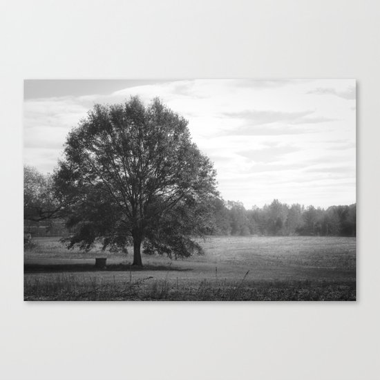 Some Time Ago Canvas Print