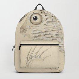 Naturalist Pufferfish Backpack