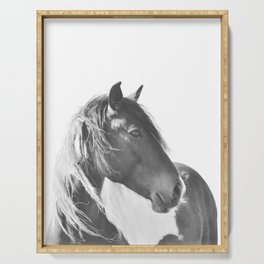 Stallion in black and white Serving Tray