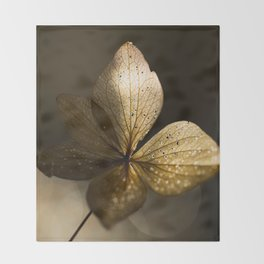 Autumn Scene - Dry Petals with Golden Sunset Light #decor #society6 #buyart Throw Blanket