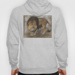Border Lion by Geza Vastagh Hoody