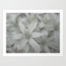white and grey Art Print