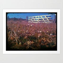 Country Views Art Print