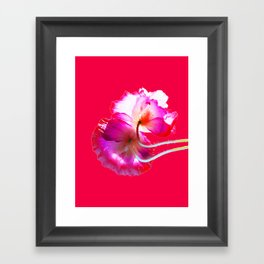 POP Poppy Love Framed Art Print