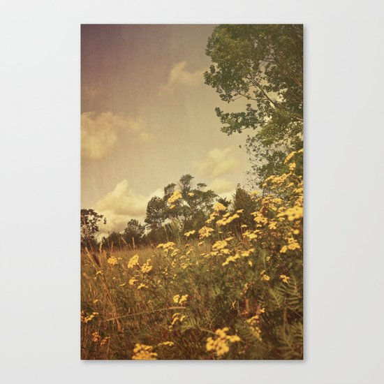 Summer Whimsy Canvas Print