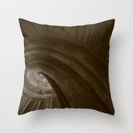 Sand stone spiral staircase 002 Throw Pillow