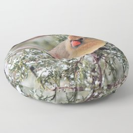 Frosty Female Cardinal Floor Pillow