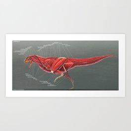 Carnotaurus Muscle Study Art Print