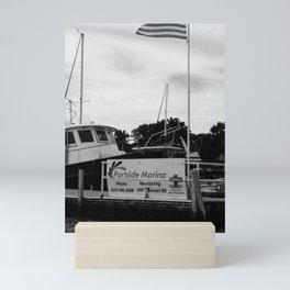 """Portside, Kelley's Island"" Photography by Willowcatdesigns Mini Art Print"