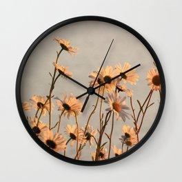 Daisies of the river bank Wall Clock