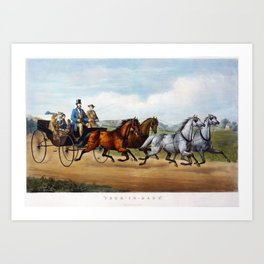 Four In Hand Vintage Horse Driving Image Art Print