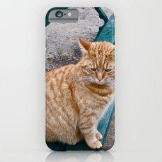 The Cat iPhone 6s Slim Case