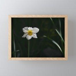 Alone Framed Mini Art Print