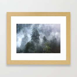 Smoky Redwood Forest Foggy Woods - Nature Photography Framed Art Print