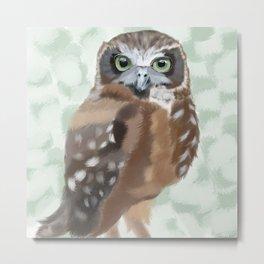 Green Eyed Owl Metal Print