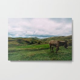 Ecuadorian Highlands Metal Print