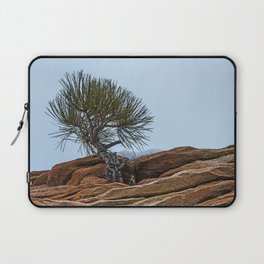 PINE AND PLANET Laptop Sleeve