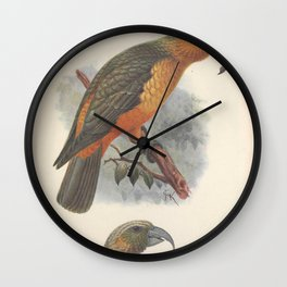 Vintage Print - Norfolk Kaka, from Extinct Birds (1907) Wall Clock
