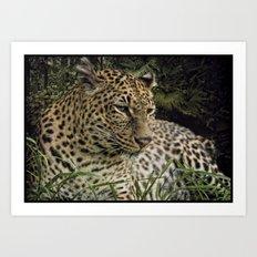 Jaguar resting Art Print