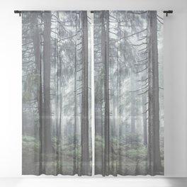 Path Vibes Sheer Curtain