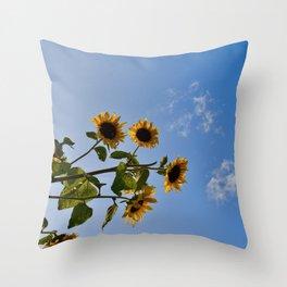 SF4 Throw Pillow