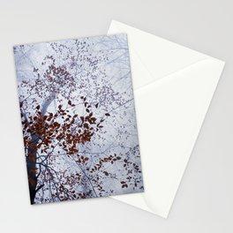 Late November Stationery Cards