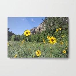 Sedona Sunflowers Metal Print