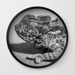 B&W Chameleon  Wall Clock