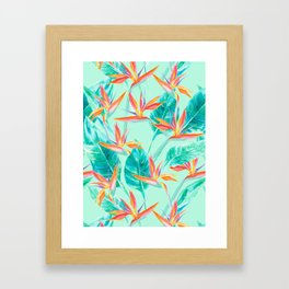 Birds Of Paradise Mint Framed Art Print