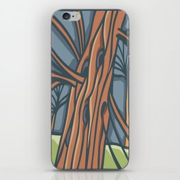 Redwood Tree iPhone Skin