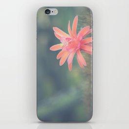 Little Cactus Flower iPhone Skin