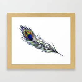 The Peacock's Feather Framed Art Print