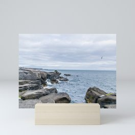 Icelandic Shore Mini Art Print