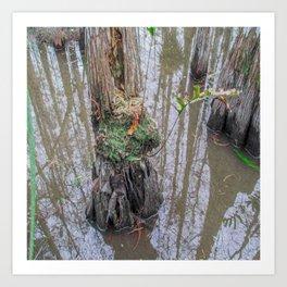The  Swamp Fairy's Home Art Print