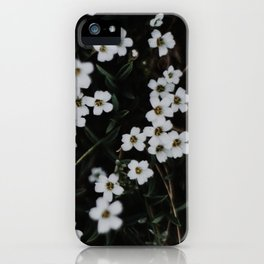Sow iPhone Case