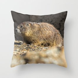 Two Marmots At Smith Rock Throw Pillow