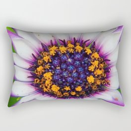 OSTEOSPERMUM 'Margarita White Spoon' Rectangular Pillow