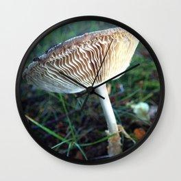 Mushroom H Wall Clock