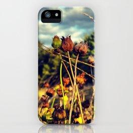Lasting love iPhone Case