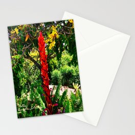 Alpinia purpurata – Red Ginger Flower, Nature in Bogota, Colombia Stationery Cards