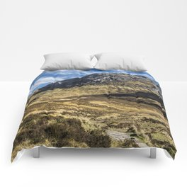 Glencoe Comforters