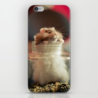 hamster iPhone & iPod Skins featuring Hungry Hamster by EmilyBest