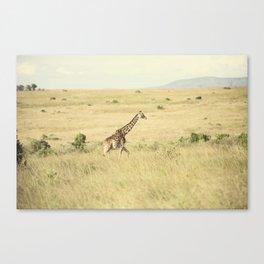 journey::kenya Canvas Print