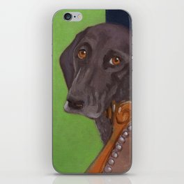 Dog on Chair iPhone Skin