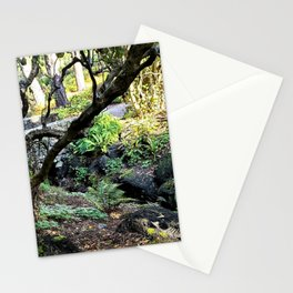 Light Play on a Moss and Fern Laden Creek Stationery Cards