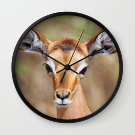 Cute litte Impala, Africa wildlife Wall Clock